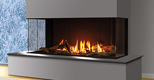 U50 Urbana Gas Fireplace