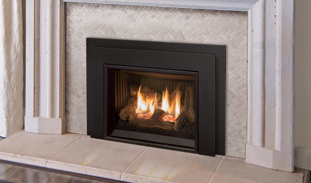 The E20 Gas Fireplace Insert