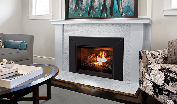The E25 Gas Fireplace Insert