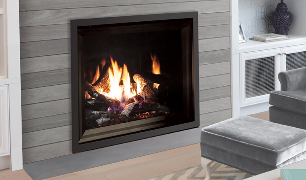 Strange Enviro Products Gas G39 Gas Fireplace Download Free Architecture Designs Ferenbritishbridgeorg