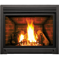 DV42DX Fireplace